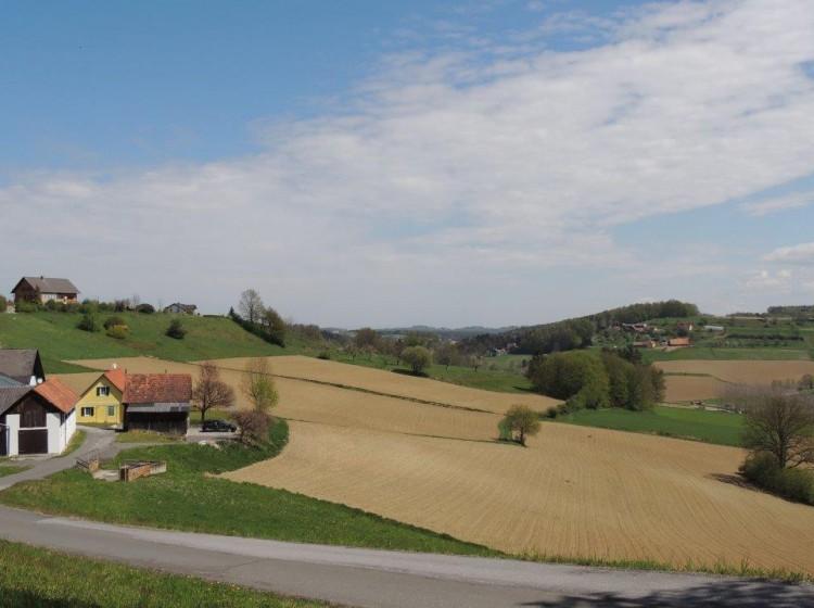 Objektfoto: Renoviertes Bauernhaus mit landwirtschaftlichen Flächen Nähe Riegersburg im Steirischen Vulkanland