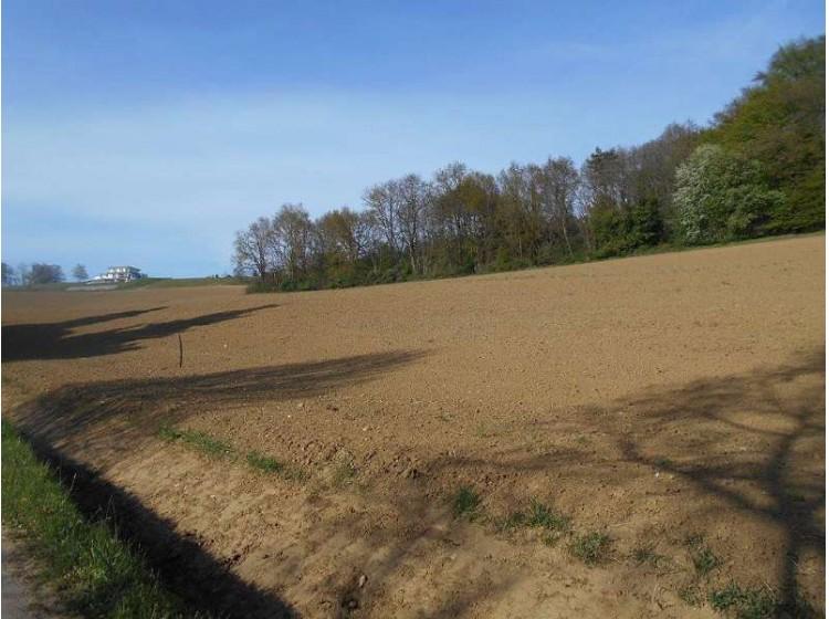 Objektfoto: Investieren Sie in Grund und Boden - ca. 51.831 m² arrondierte Ackerflächen im Thermengebiet!