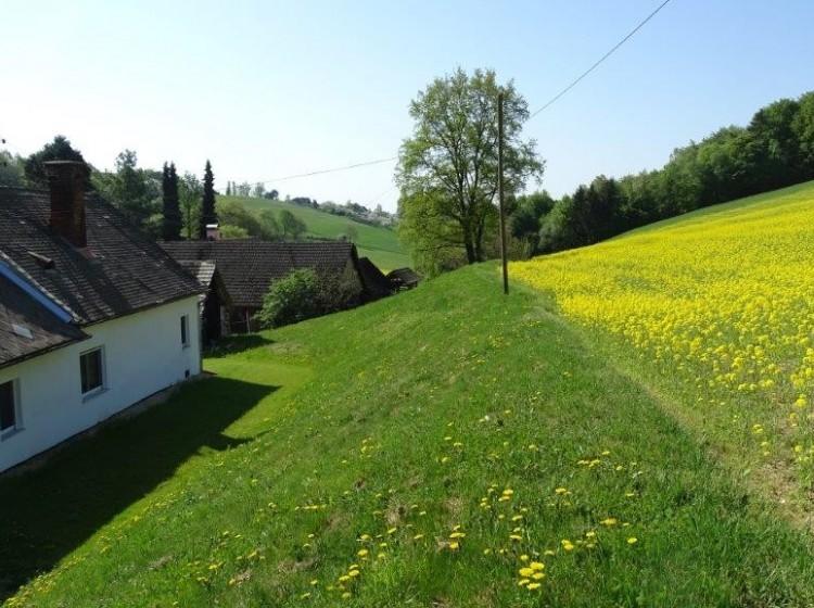Objektbild: Einzigartiges Grundstück - 2 Bauernhäuser - unmittelbare Thermennähe!
